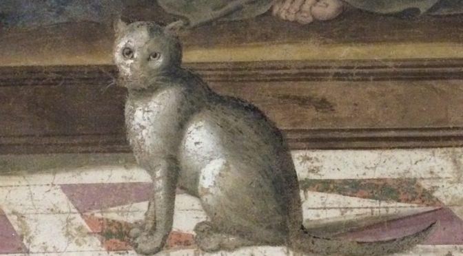 フィレンツェ、5日目、サン・マルコ美術館、ギルランダイオ、《最後の晩餐》、猫